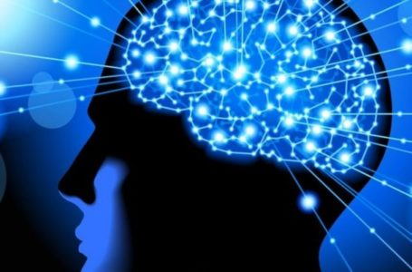 Prefer Magnesium L-Threonate Powder To Get Improved Brain Power