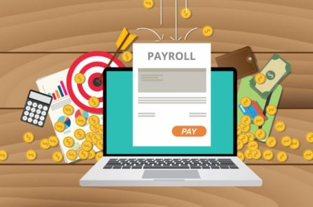 7 Tips How To Select The Best Payroll Software For Your Business